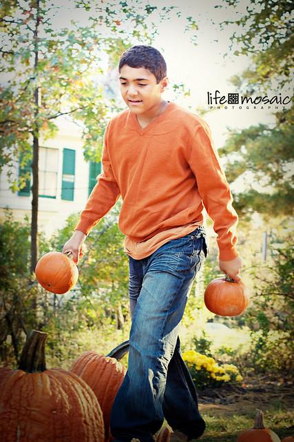 WB Pumpkins