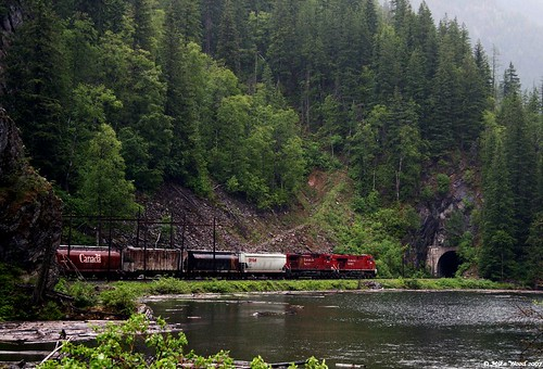 Train near Revelstoke