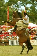 Jineteadas y payadas (Eduardo Amorim) Tags: horses horse southamerica caballo uruguay cheval caballos cavalos prado montevideo pferde cavalli cavallo cavalo gauchos pferd hest hevonen chevaux gaucho  amricadosul montevidu hst uruguai gacho  amriquedusud  gachos  sudamrica suramrica amricadelsur  sdamerika jineteada   americadelsud gineteada  americameridionale semanacriolla semanacriolladelprado eduardoamorim