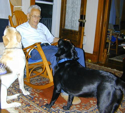 Two Spoiled Grandpuppies
