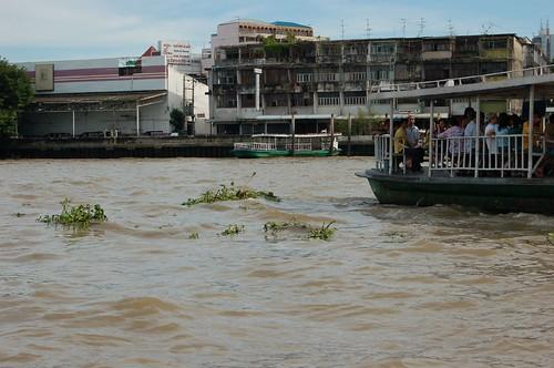 いろいろなものが川に流れている