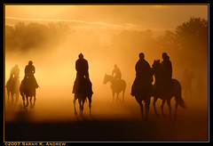 Morning Rush (Rock and Racehorses) Tags: horses horse orange ny sunrise glow silhouettes 8 explore eight thoroughbred contrejour riders racehorses killerbee supershot amazingtalent anawesomeshot worldwidephotographers elegantgroup theperfectphotographer