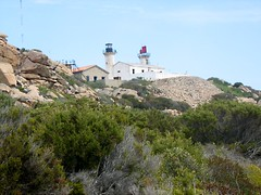 Le phare de Senetosa depuis Capu di Senetosa