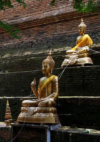 String on Buddhas at Wat Lok Molee