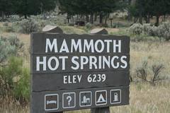 IMG_1672 (s.smith86) Tags: mammothhotsprings yellowstonepark