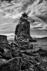 Broken (Rob Piazza) Tags: canada vancouver photography nikon photographer stanleypark fotografia robertpiazza robpazza