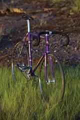 Naaasty Nagasawa! (Dancing Weapon of Mass Destruction) Tags: bike bicycle japan vintage japanese gold cycling stem track 5 ace gear fixed pearl titanium pista keirin dura araya nitto shimano 10mm njs nagasawa kashimax da10 titaace