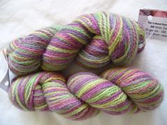 sock yarn 015