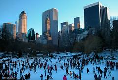 Ice Skating in Central Park (4245a) (zormsk) Tags: nyc newyorkcity winter cold centralpark iceskating skaters bigapple soe wintersports zormsk tlmccormick