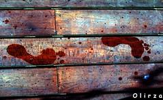 empreintes (olirza) Tags: eau traces 2006 t pieds couleur bord piscine mite dcollage yougo jony empreintes cavecanem