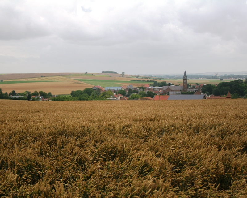 Le Hamel viewed from the Australian Hamel Memorial