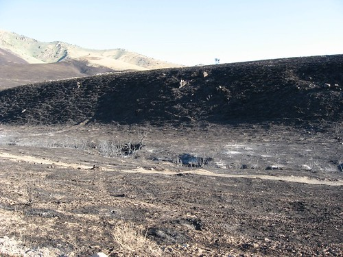Fire Desolation, Winnemucca, Nevada (5)