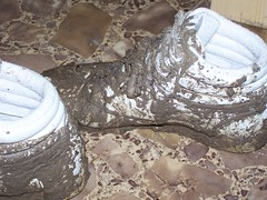 Lots of splatter when digging. (Sneaker fan) Tags: wet outside shoe freestyle shoes ditch mud womens sneakers messy worn muddy wam reebok
