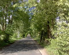 2007-05-18 z550 09 Norderstedt Lehmkuhlen (kaianderkiste) Tags: norderstedt allee lehmkuhlen