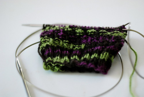 dishrag socks