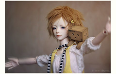 hold on! (karmadekarmade) Tags: doll action mini figure luv bjd basic pon ninomiya revoltech zaoll danboard