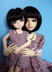 bf 025 (ranmanekineko) Tags: fashion japanese doll sam beth stripes sd figure bjd samantha dollfie dollstown michaelelizabeth