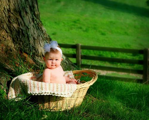 Cutie in a Basket by Belinda Nicole.