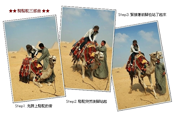 camel-riding