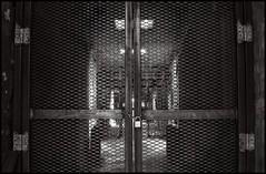 lockdown - by anjan58