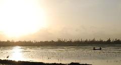 Canoa. (Jaime Eagle) Tags: sunset sun color sol atardecer asia vietnam puesta
