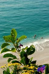 Balcon de Europa (Gnudenstore) Tags: ocean pink flowers blue autumn light sea people sun 3 flower men green sol beach yellow strand swimming de three seaside sp