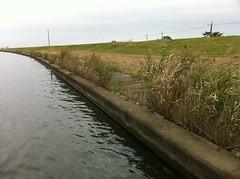 遠賀川、ではなくて常陸利根川