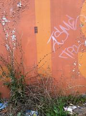 (theres no way home) Tags: plants chicago trash graffiti weeds parkinglot logansquare megamall tpc asme theresnowayhome