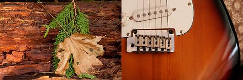 week 45: mahogany