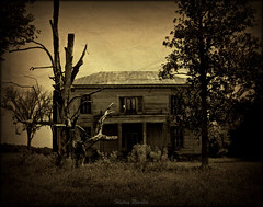 Ghost of the Old South (History Rambler) Tags: old house abandoned home rural south northcarolina historic southern plantation vacant antebellum decayed tinroof martincounty greekrevival oncewashome