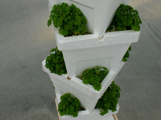 Styrofoam in Epcott Sustainable Agriculture Exhibit