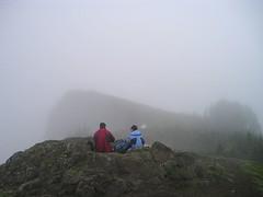 View Waiting