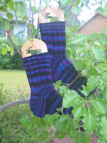 Socks in trees