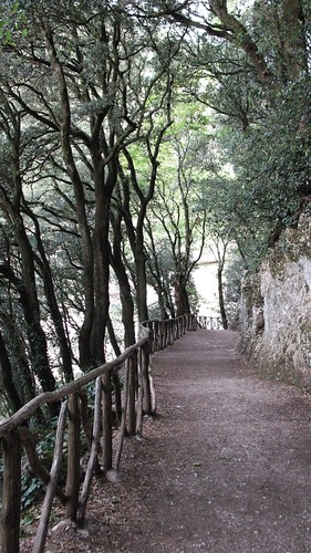 sentiero, bosco, Assisi, Francesco, Eremo delle Carceri