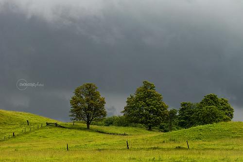 stormy {174}