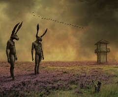 Too Big A Prey (Mattijn) Tags: cat utrecht surreal photomontage crows pino photoart sculptures watchtower hares purplemoorgrass wanderingthepurplemoor mrhare
