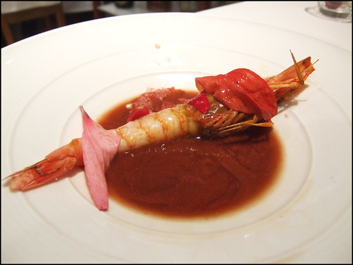 El Poblet (Denia, Spain) - Prawn 2007
