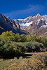 Shades of Fall (Jeffrey Sullivan) Tags: california usa nature canon landscape eos fallcolors sierra eastern mountainhighworkshops sullivanworkshop