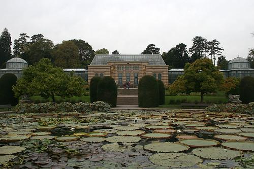 Maurischer Garten - Seerosenteich
