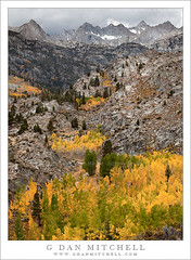Sabrina Basin, Autumn Color and Rain (G Dan Mitchell) Tags: california travel autumn trees usa sabrina mountain snow storm color green fall nature face field rain weather yellow clouds creek forest season landscape gold grove nevada stock scenic rocky fork basin sierra ridge alpine valley northamerica peaks middle aspen range bishop rugged induro