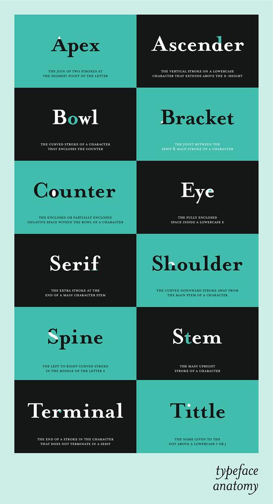 Typeface Terminology