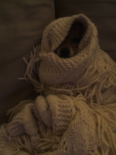 Mina in swaddling clothes II