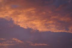 Orange sunset (Jolanda van Tuijl) Tags: sunset sky orange clouds zonsondergang wolken lucht oranje jolanda lightfall mrsjolanda