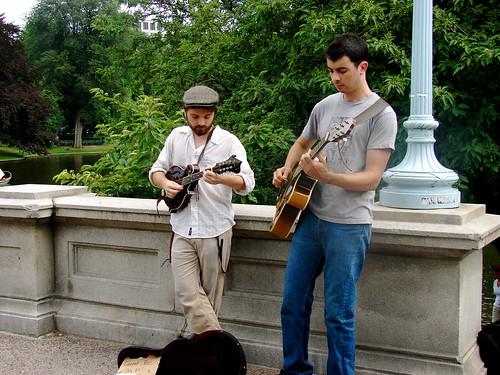 Musician Serenade
