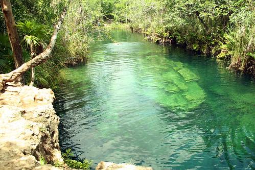 Cenote Escondido, Cenotes en Tulum,