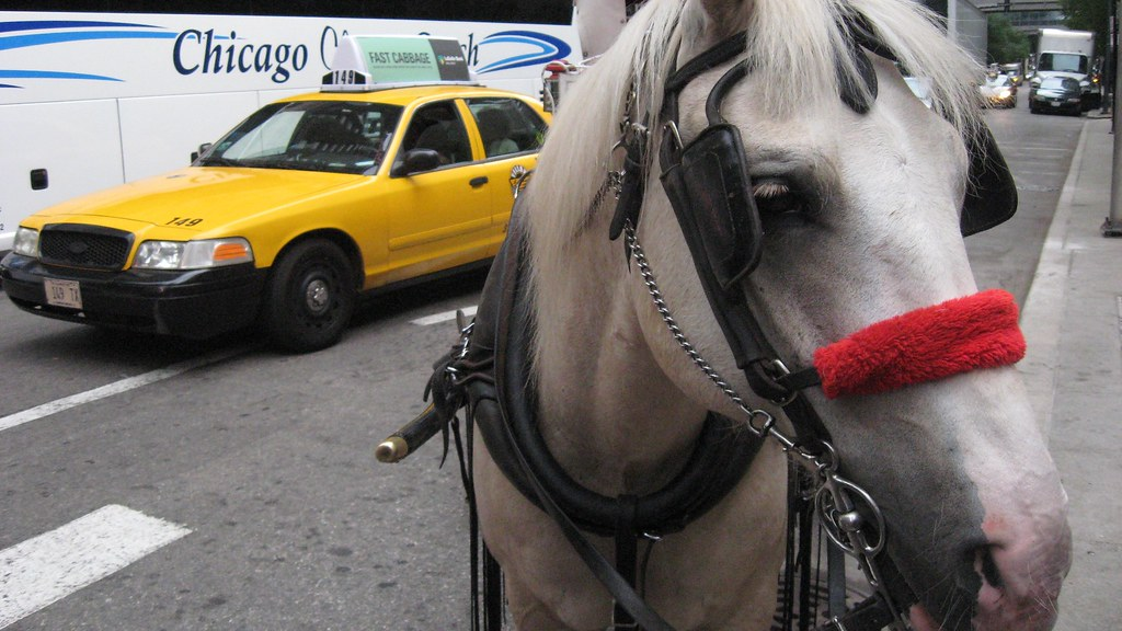 horse and cab