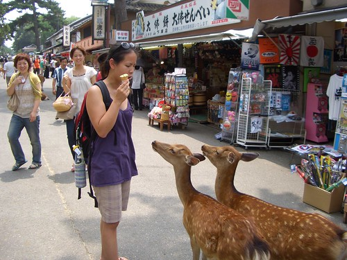 Two deer wanting ice cream