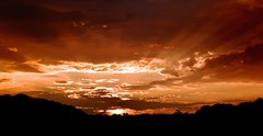 Blazing Red Sky... (DriveByPhotographer) Tags: flowers beauty newcastle delete co wildcard naturesfinest mywinners anawesomeshot impressedbeauty superbmasterpiece diamondclassphotographer flickrdiamond