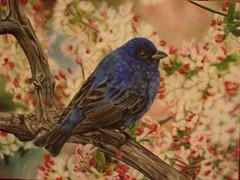 Blossom (Nilufer Subasi) Tags: pet tree bird art animal painting paint artist branch blossom dal canvas painter oilpainting resim ku aa hayvan tuval yalboya