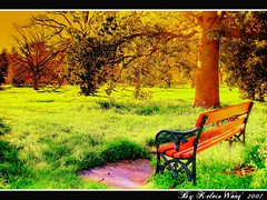 Enjoy Your Weekend  (Kelvin Wong (Away)) Tags: park tree green nature bench weekend seat relaxing australia adelaide grasses stool southaustralia aplusphoto
